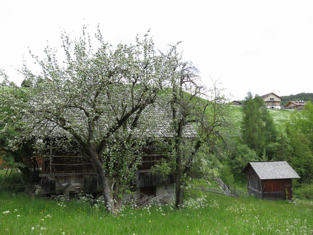 Wanderführerausbildung 2013 in Neustift / Südtirol